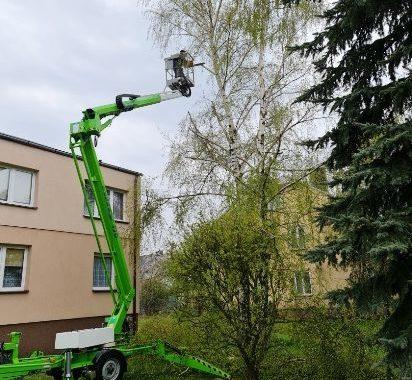 Wzór Zgody – Zezwolenia Na Wycinkę Drzew 2021 R. Do Pobrania.
